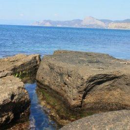 Берег Черного моря крым